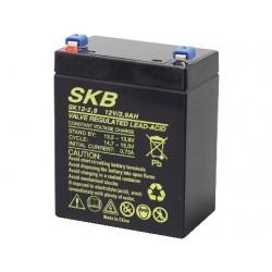 batteria al piombo ricaricabile 12v 2,9A