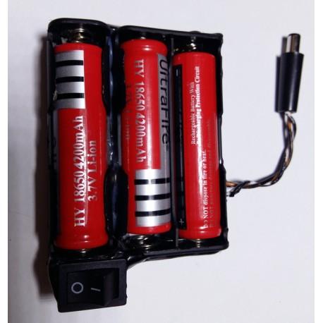 pacco batteria ricaricabile al litio 12v 1800mAh con caricabatteria