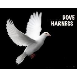 servente invisibile per colombe